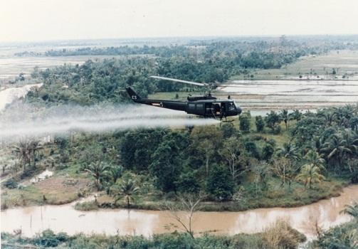 La guerra y los daños ambientales: acciones del hombre que afectan la subsistencia de lahumanidad