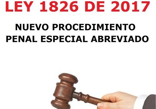 El acusador privado: ¿una oportunidad para garantizar el acceso a lajusticia?