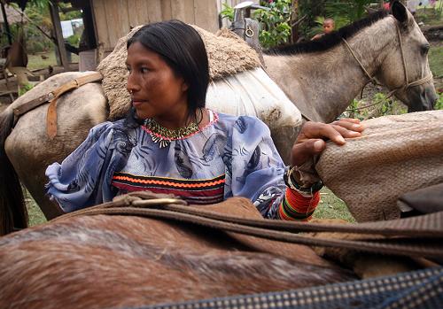 La decisión que otorga tierras a indígenas enCaldas