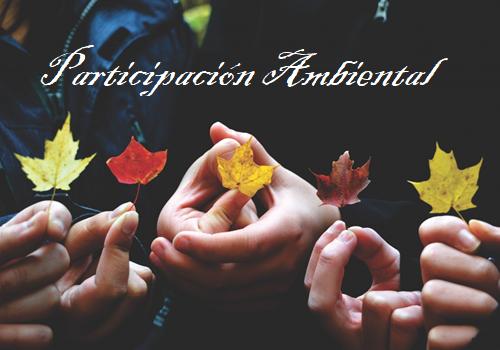 participación ambiental