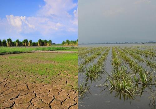 La gestión de Colombia sobre el CambioClimático